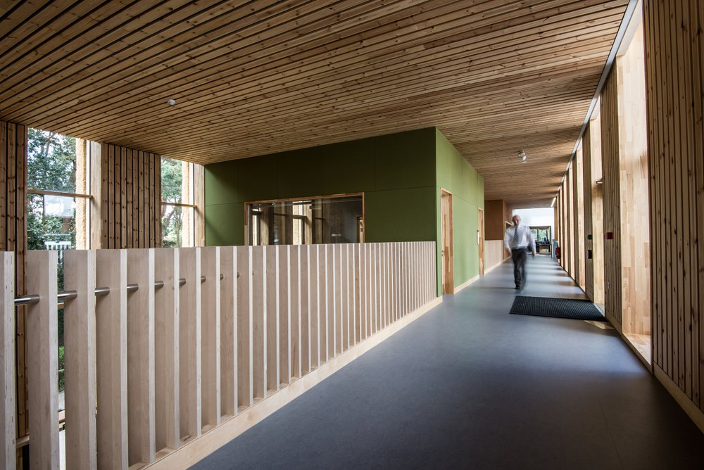 Image of a corridor within the Enterprise Centre which features a lot of local wood as part of the design