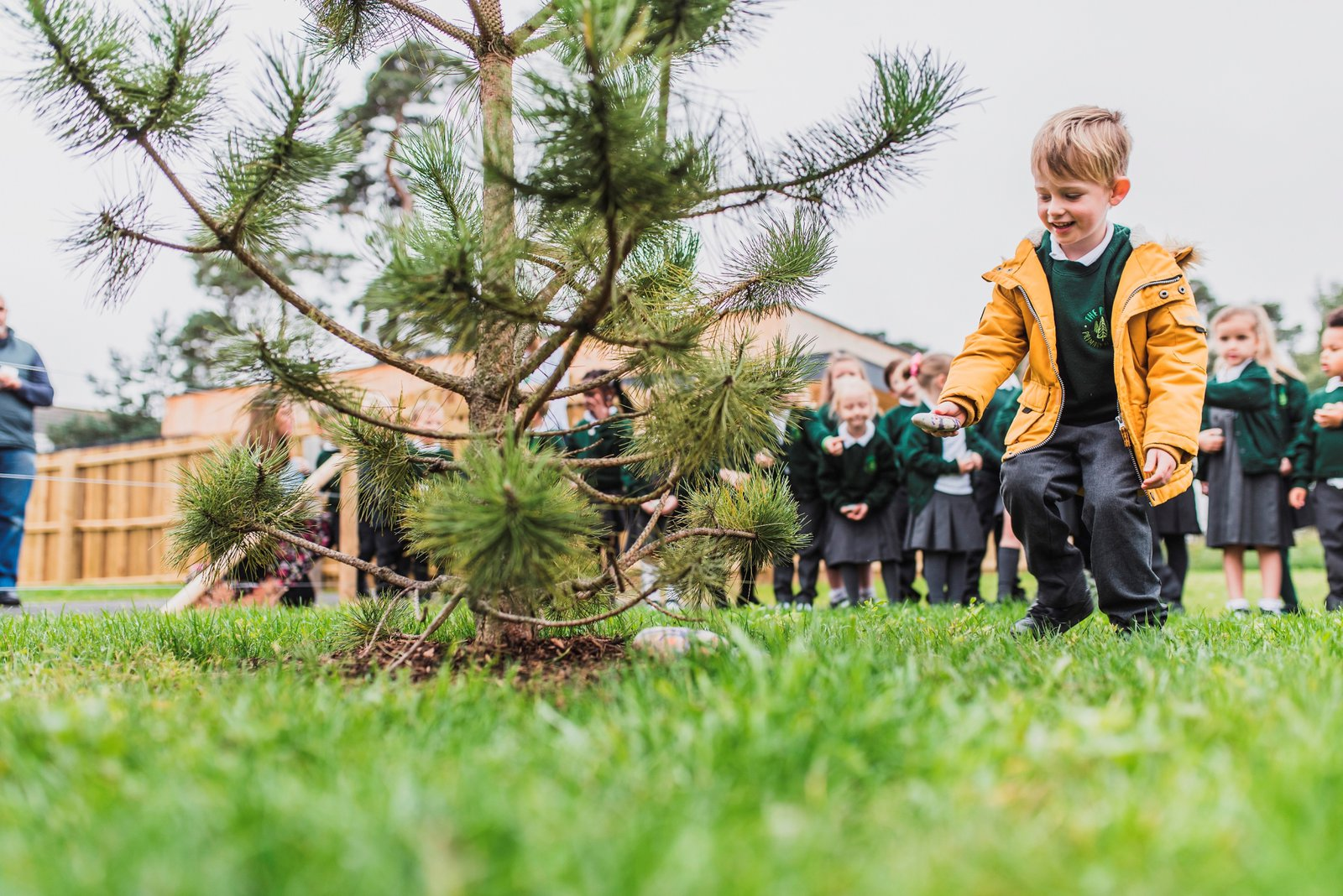 Pupil places painted stone on new pine tree donated by Morgan Sindall