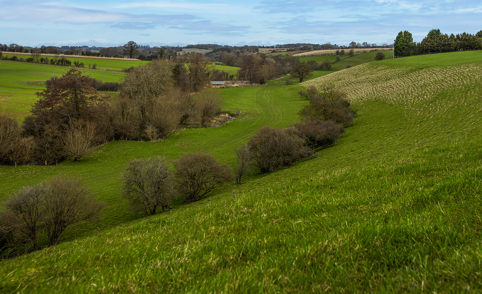 A scenic view of woodland and countryside