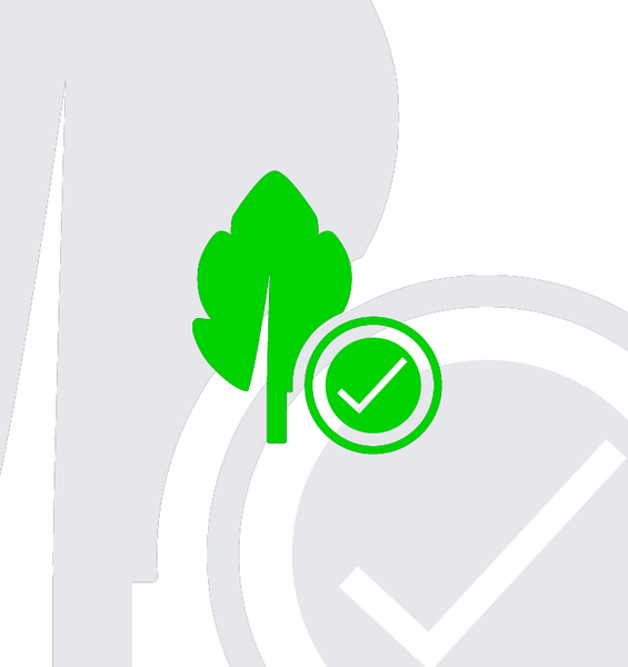 An icon depicting a leaf next to a tick symbol